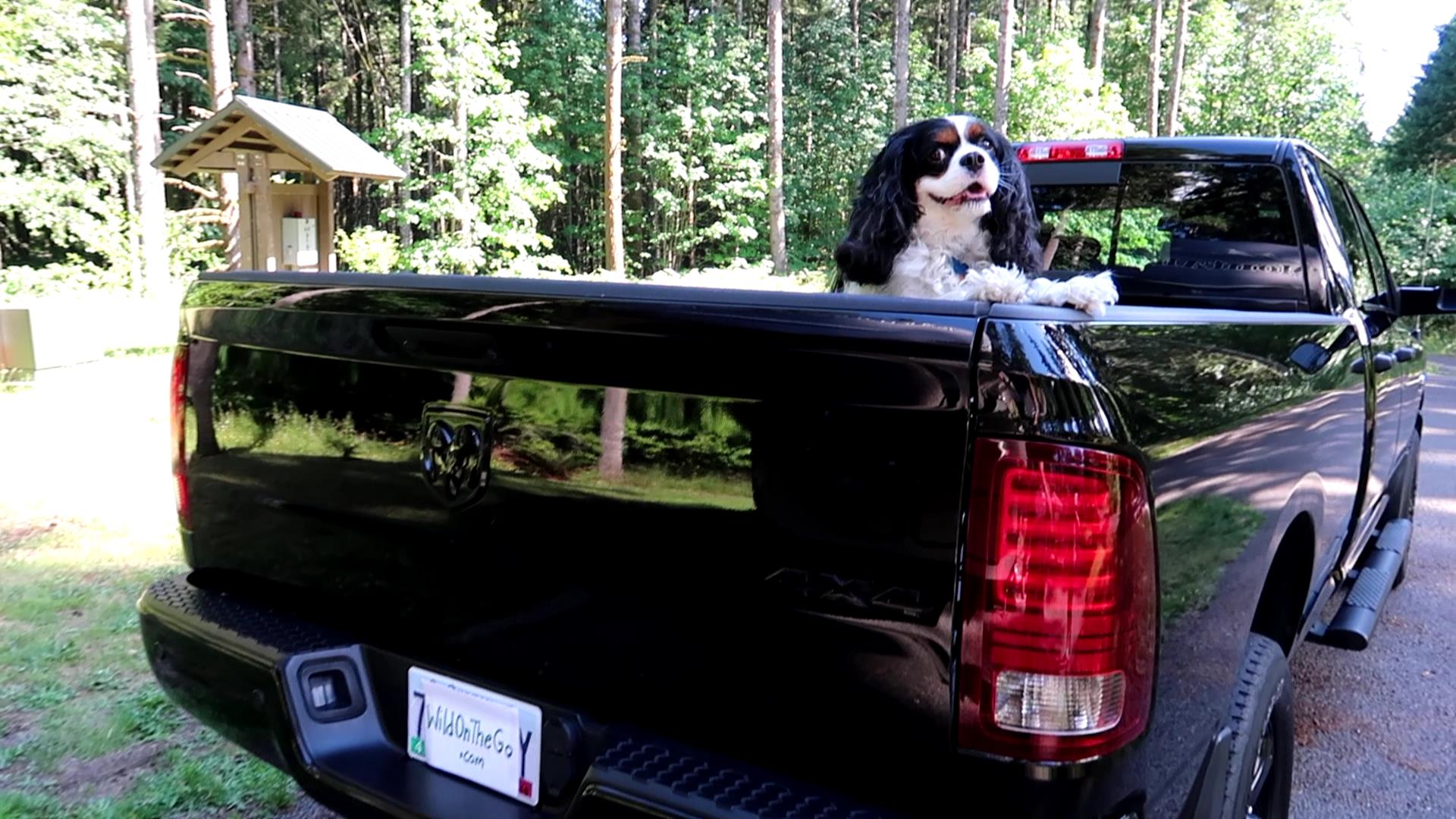 Our RAM Truck and Hitch System for 5th Wheel